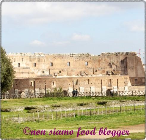 Il Colosseo da un punto di vista un pò diverso...